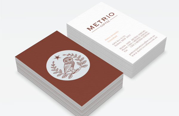 2colour-clean-corporate-business-card