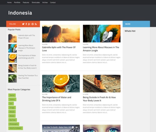 Another one from the Sora designers - Great Blogger Theme