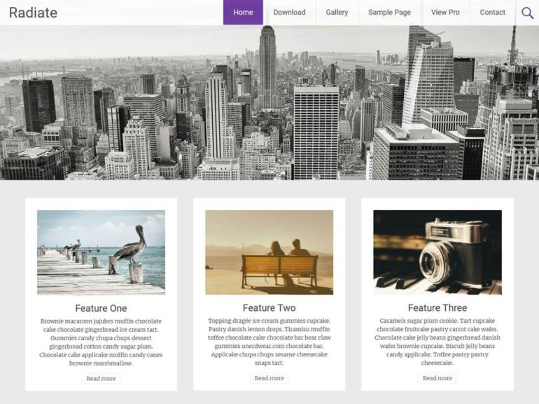 Radiate free word press theme