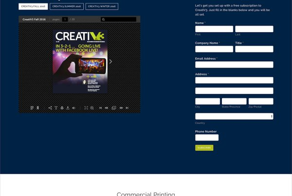 V3 Printing Web Design & Development