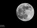 Super Moon - Mamaia