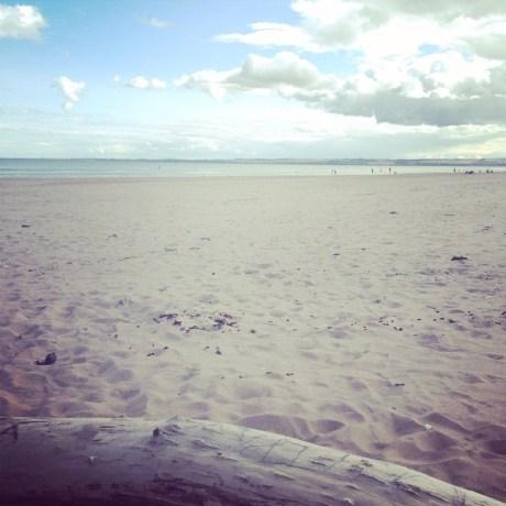 beach, scotland, tentsmuir, view, landscape, fife, dundee, cycling