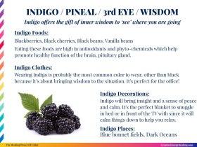 The Healing Power of Indigo!