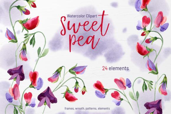 sweet pea schrift # 16