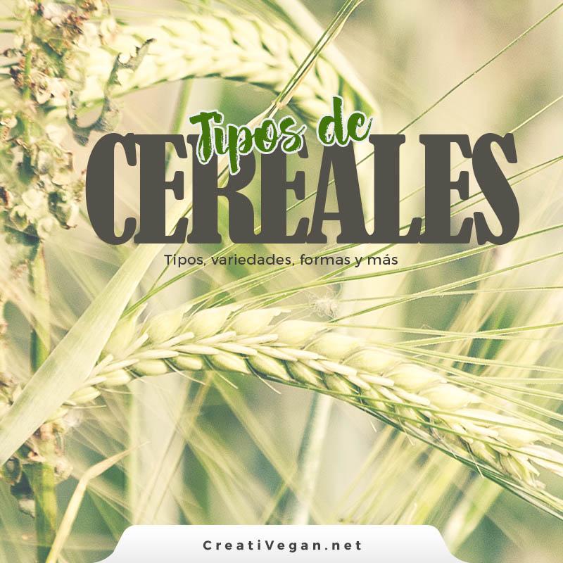Tipos de cereales: variedades, formas, etc. - CreatiVegan.net