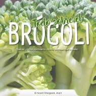 Todo sobre el brócoli