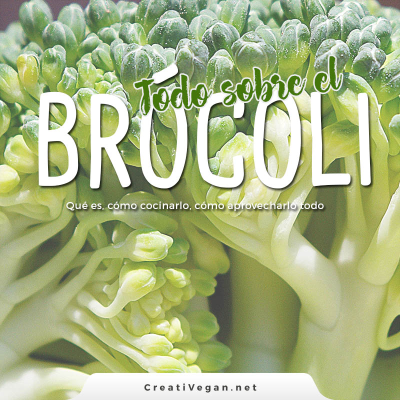 Todo sobre el brócoli: variedades, cómo elegirlo, cómo cocinarlo, etc. - CreatiVegan.net