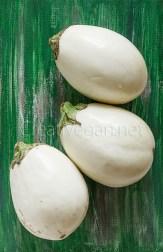 Berenjenas blancas - Berenjenas blancas rellenas de arroz negro