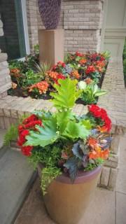 MN Gardening Services