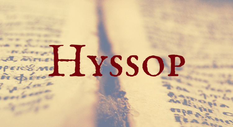 Word Nerd Wednesday - Hyssop