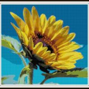 sunflower-cross-stitch-pattern-vsframed