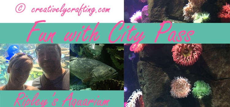 City Pass Fun – Ripley's Aquarium