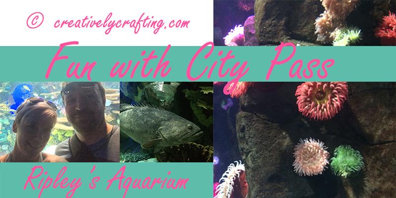 City Pass Fun – Ripley's Aquarium