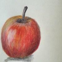 Ilustratie mar rosu