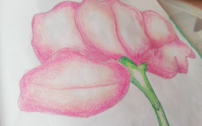 The Lotus Flower - by Cristina Parus @ creativemag.ro - Art Journaling and Mixed Media