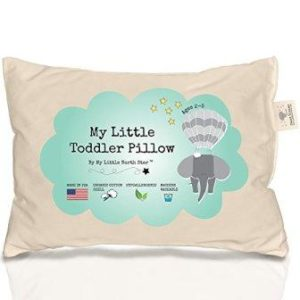 Cheap Organic toddler pillow under $20