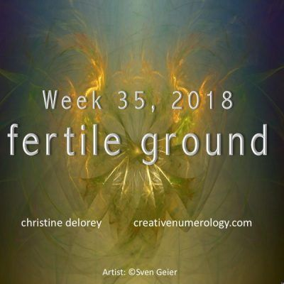 WEEK 35 – FERTILE GROUND