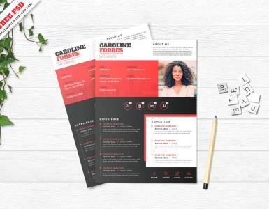 resume template free psd