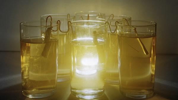 Vinegar electricity