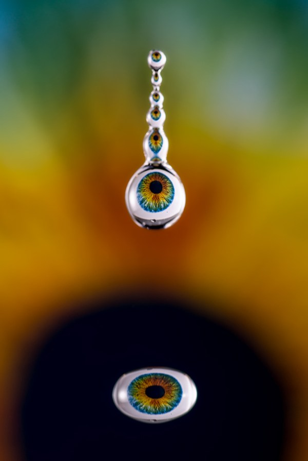 Amazing Images Captured In Tiny Water Droplets - Amazing images captured tinniest water droplets