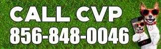 call cvp 856-848-0046