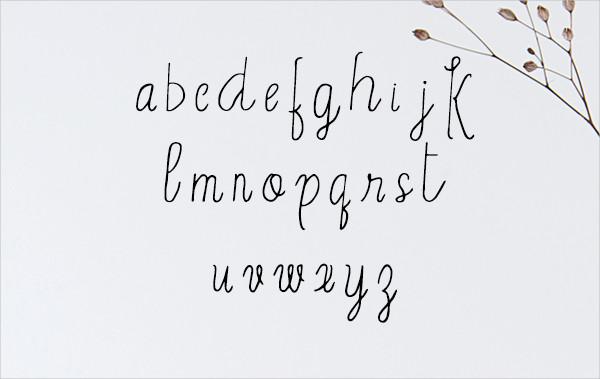 Erica Script Font
