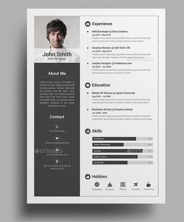 Professional Infographic Resume