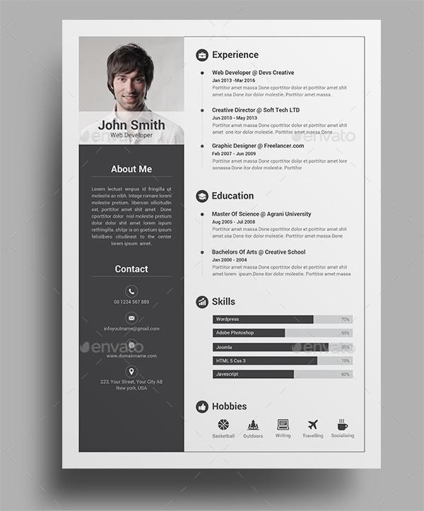 Professional Infographic Resume