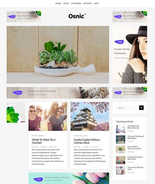 Osnic wordpress theme