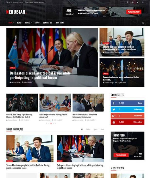 Nerubian wordpress theme