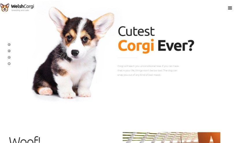 Welsh Corgi | Dog Breeding and Sale WordPress Theme