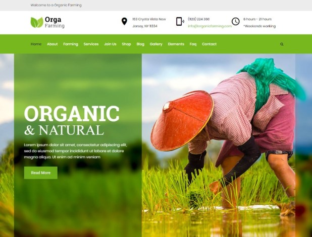 Orga Farm - Organic Food, Organic Farm WordPress Theme