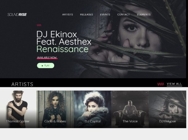 SoundRise - Artists, Producers and Record Labels WordPress Theme