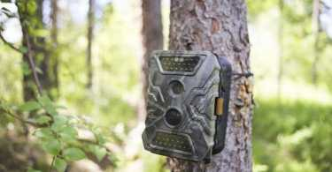 Best Game Trail Cameras Reviews