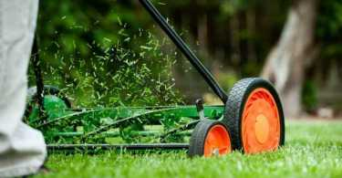 Best Reel Mowers reviews