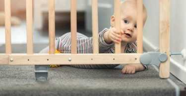 Best Baby Safety Gate Reviews