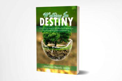 walking in destiny