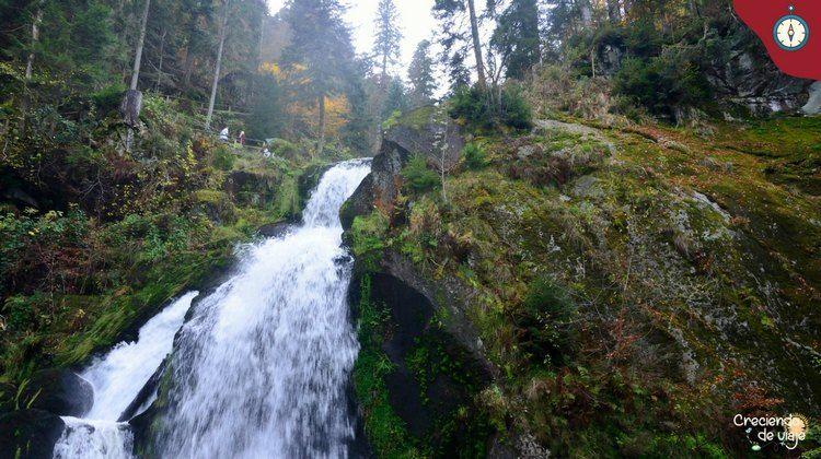 cascadas triberg selva negra