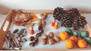 Bandeja sensorial otoño