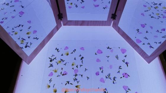 petalos y espejos mesa de luz3