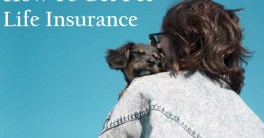 how-to-get-pet-life-insurance