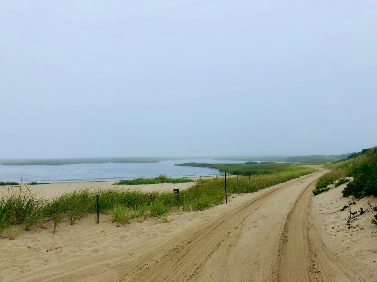 Driving on Coskata-Coatue Wildlife Refuge