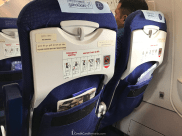 IndiGo Airlines A320 seatback strorage