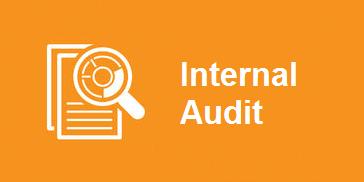 Internal AuditText