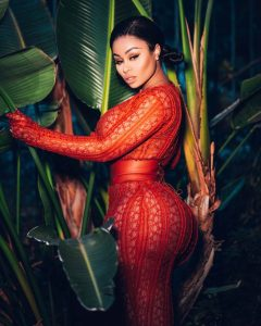 Blac Chyna Gets raunchy as she Flaunts her Nipples in a Red sheer dress
