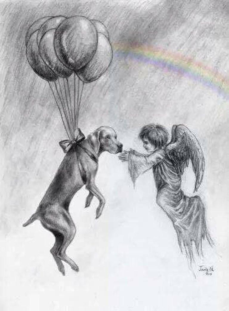 """"""" Ti prestero' un cane, te lo prestero' per un tempo gia stabilito.. """" mi sussuro' una voce."""