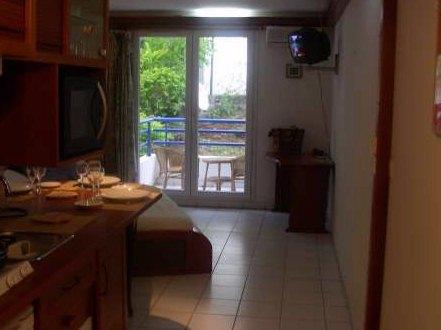 tres beau studio de 32m pour 2 a 3 personnes dans une residence securisee l appartement est dote d un balcon qui donne sur les jardins