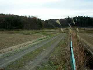 三穂田町鍋山16