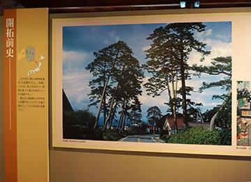 ↑展示パネル 開拓前史ー 旧街道に残る杉並木(日和田町) 郡山宿錦絵 文久元年(1861)。