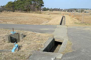 shinasakatoyonaga16